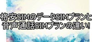 格安SIMのデータSIMプランと音声通話SIMプランの違い!